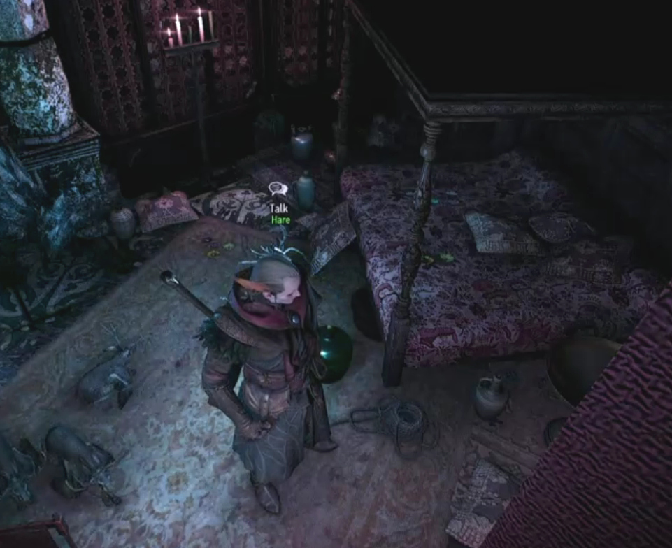 In Avallac'h's bedroom at Pali Gap... hey look, there's the rope you didn't notice...