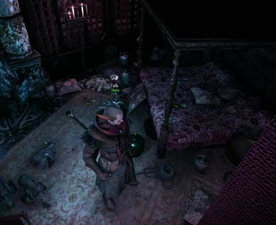 So many people miss the rope in Avallac'h's bedroom at Pali Gap