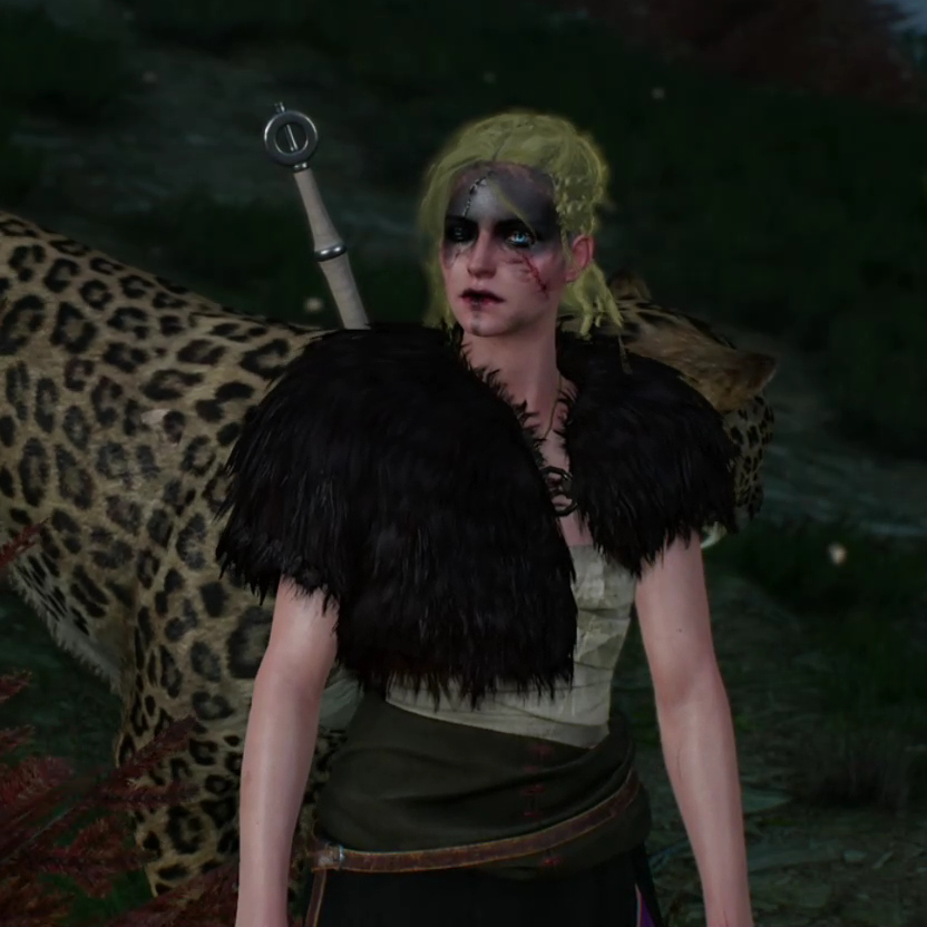 Ciri: with blue eyes, blond dreadlocks rolled in ashes, a mask of lard-ashes-fisstech, and much bigger scar... like she was described in both Tower of Swallows and Lady of the Lake.